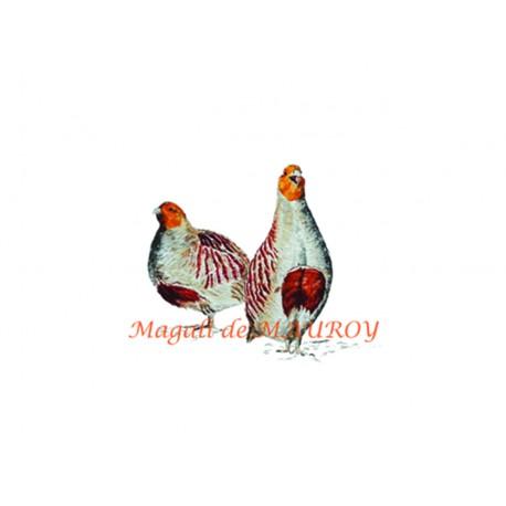 Magali de Mauroy Reproductions numérotées - Perdreaux