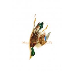 Magali de Mauroy Reproductions numérotées - Nature mort au col