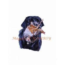 Magali de Mauroy Reproductions numérotées - Labrador à la perdrix