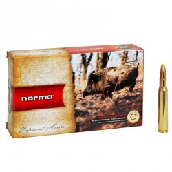 Norma - 30.06 Sprg - PPDC - 11,7g/180grs