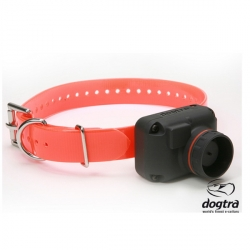 Dogtra STB hawk-reperage-collier-armurerie-steflo